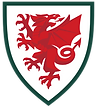 welsh national badge 2020.png