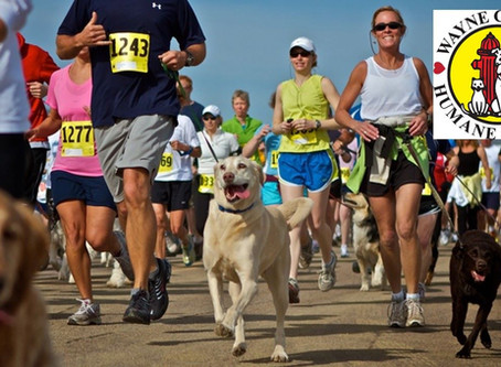 First-Ever 5K Dog Walk/Run Fundraiser to Benefit WCHS