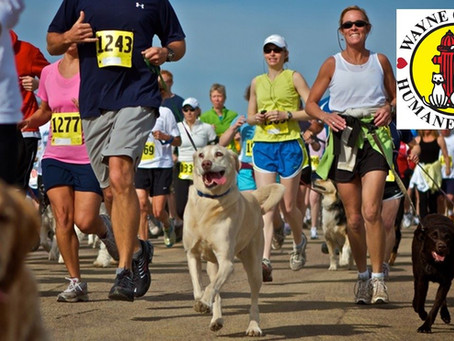 First-Ever 5K Dog Walk/Run Fundraiser to Benefit WCHS