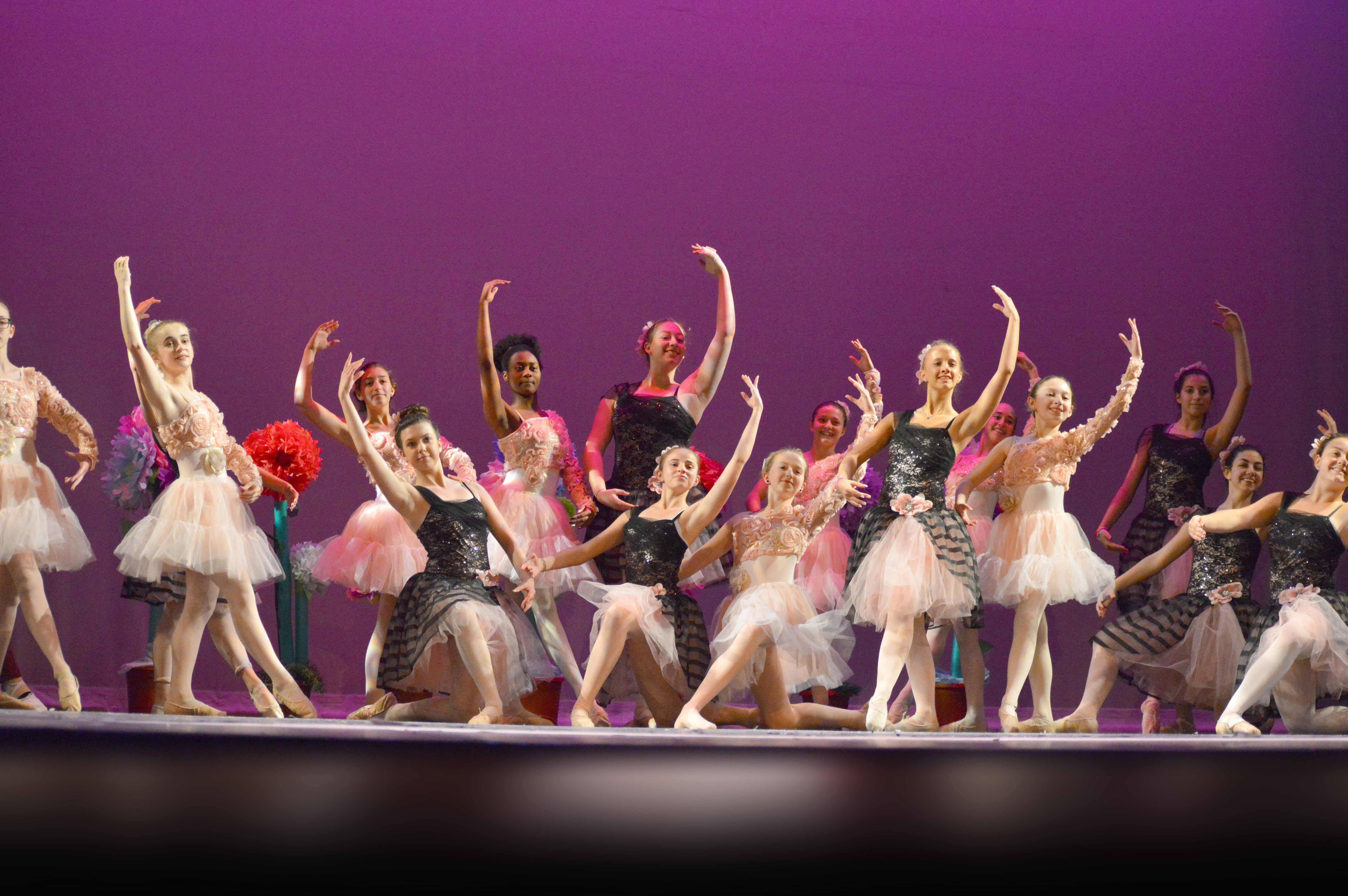 Ballet and Pointe classes!