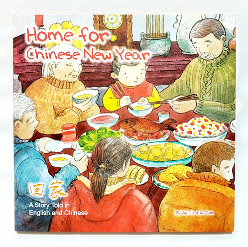 Home for Chinese New Year(回家)