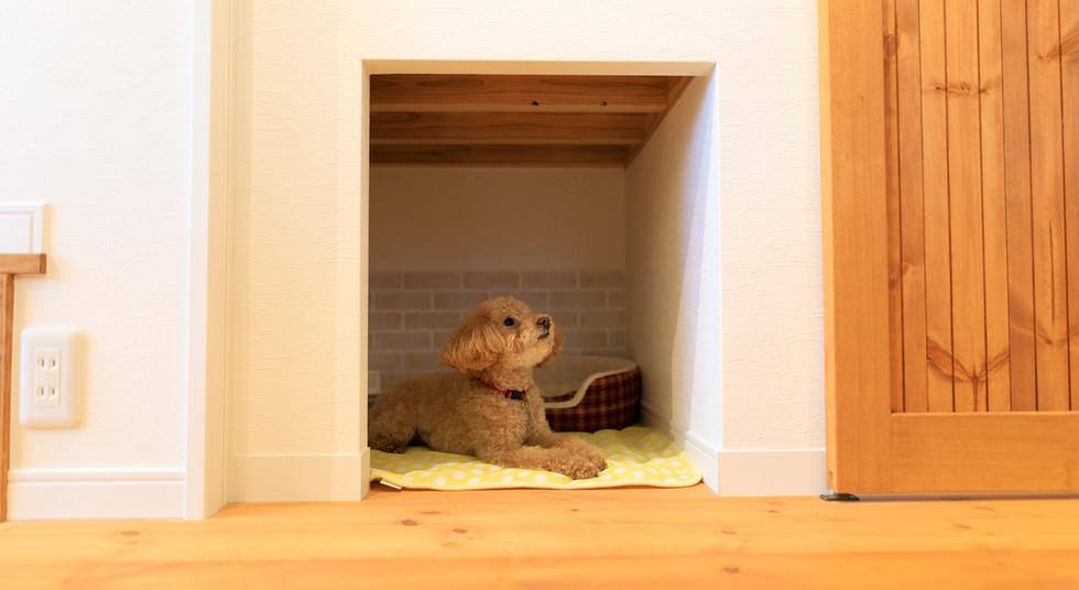 諫早市の工務店スマイフルホームで新築した長崎の注文住宅の犬部屋