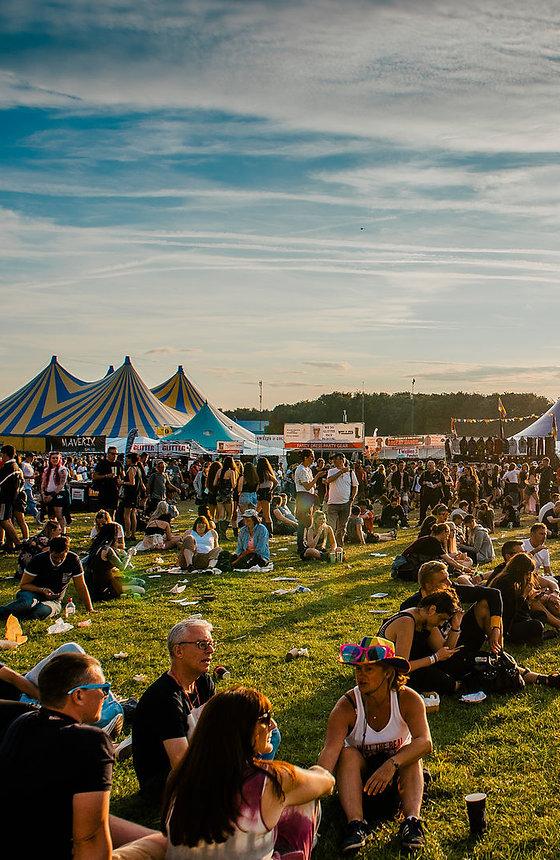 festival wholesale suppliers