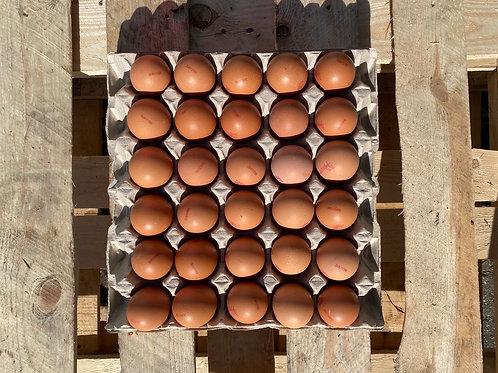 30 x Eggs