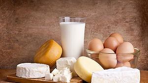dairy wholesaler