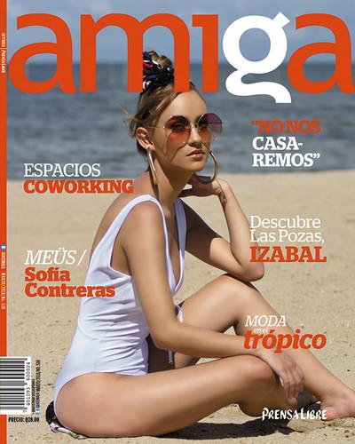 Amiga005.jpg