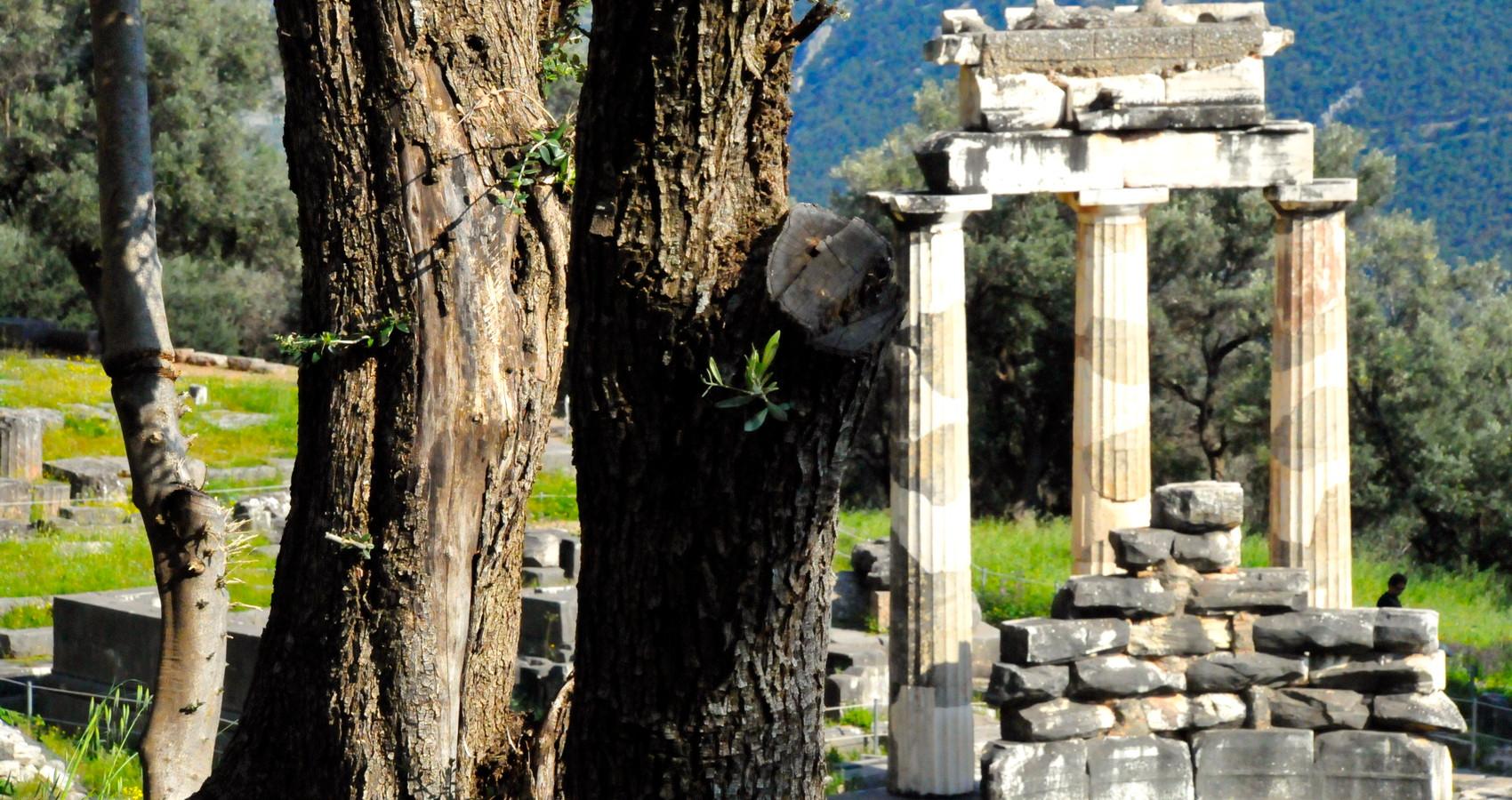 ATHENA THOLOS