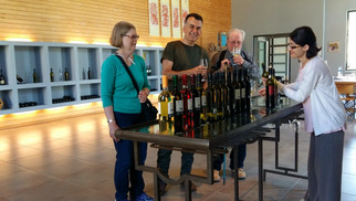WINERY TOUR IN GREECE