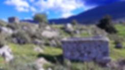 PLATAEA GARGAPHIA SPRING