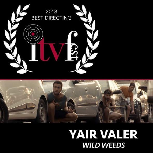 Best Directing 2018 - Yair Valer
