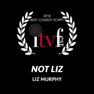 Best Comedy Script 2018 - Not Liz