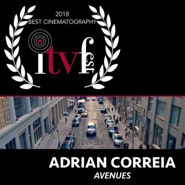 Best Cinematography 2018 - Adrian Correia