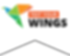 logo-tyw (1).png