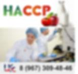 хассп, hassp, цсс, центр по сертификации