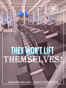 they wont lift themselves dumbbells.png