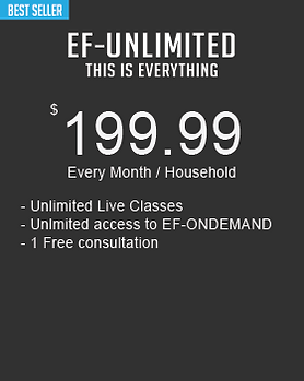 pricing option unlimited.png