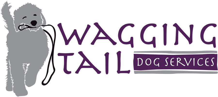 WTDSLogoFinal_forweb