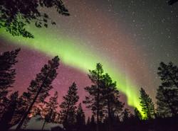 Aurora's light