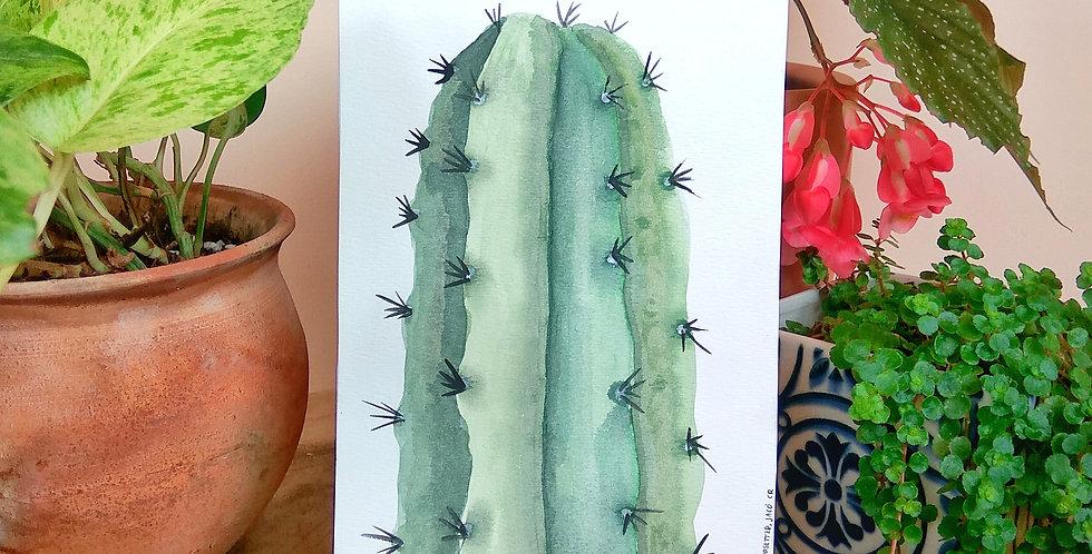 Hand painted art 'Cereus Peruvianus'