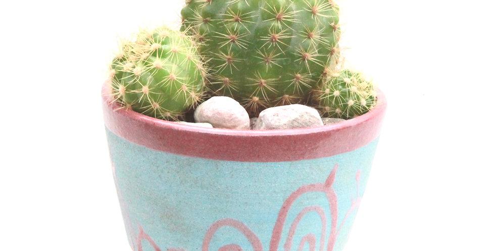 'Cotton Candy' small ceramic planter