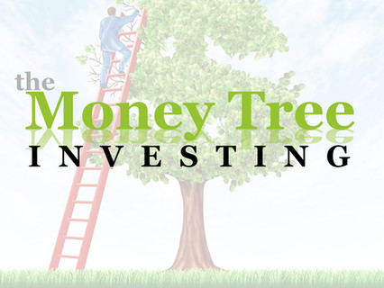 MoneyTree Podcast: Choosing Real Estate Syndications over Technology
