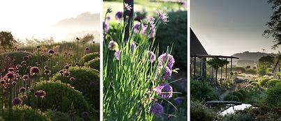 jardin-francois-au-printemps_008.jpg