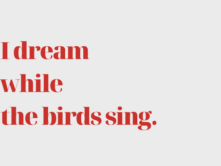 I dream while the birds sing