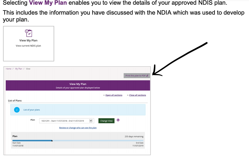 Image showing the NDIS portal buttons to download your NDIS plan to PDF