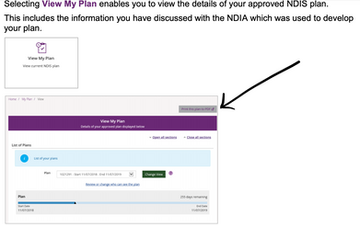 How to save your NDIS plan to PDF