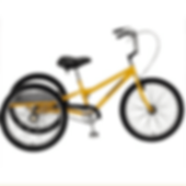 Adult tricycle from Body Cycles, Bike riding physiotherapy, learn to ride a bike, Melbourne, NDIS, Splash Physiotherapy