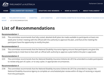 NDIS planning inquiry interim report released