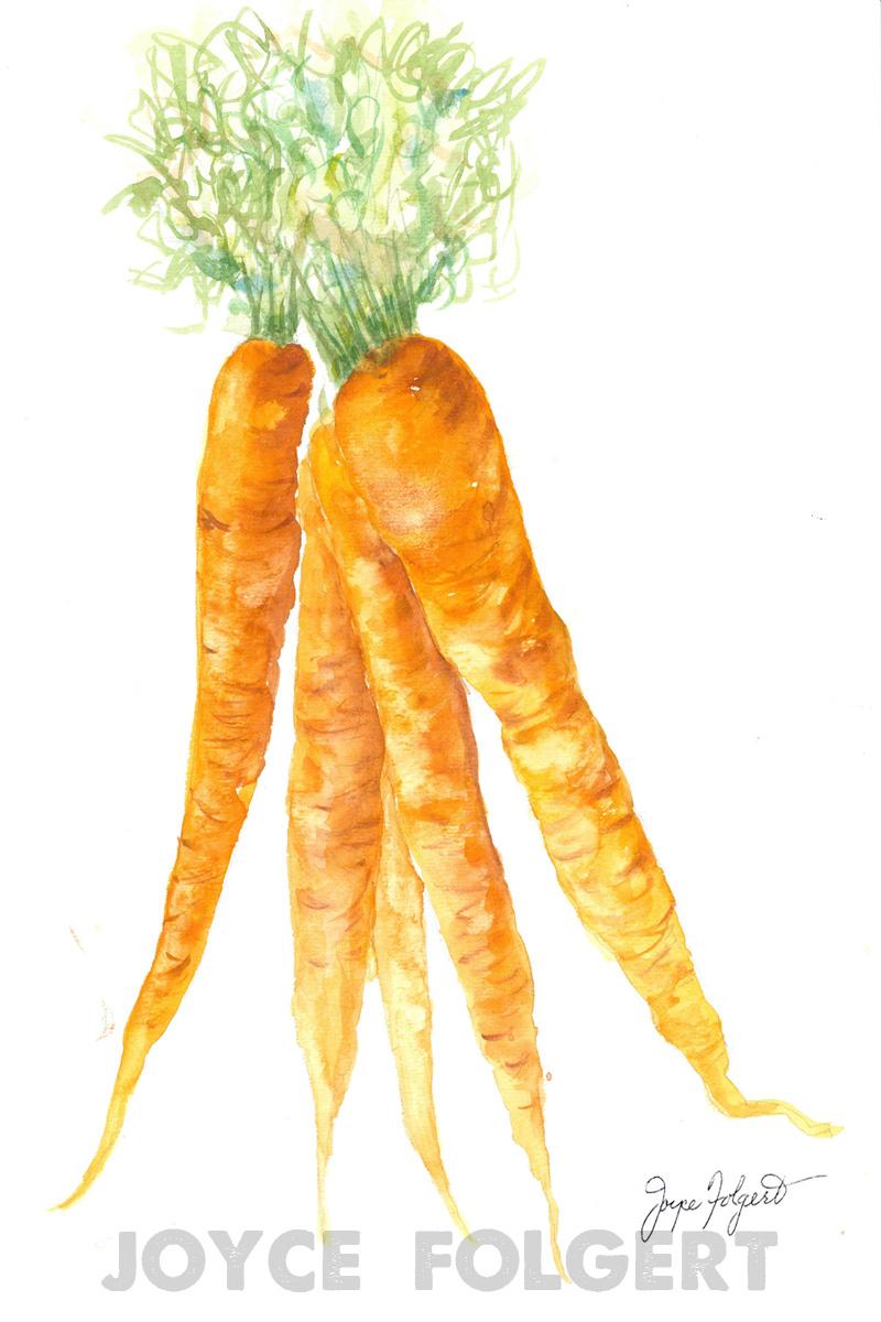 Carrots - 16 Carrots