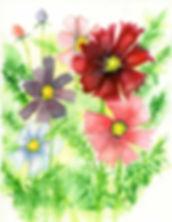 Blue,-purple,-red,-pink-flowers.jpg