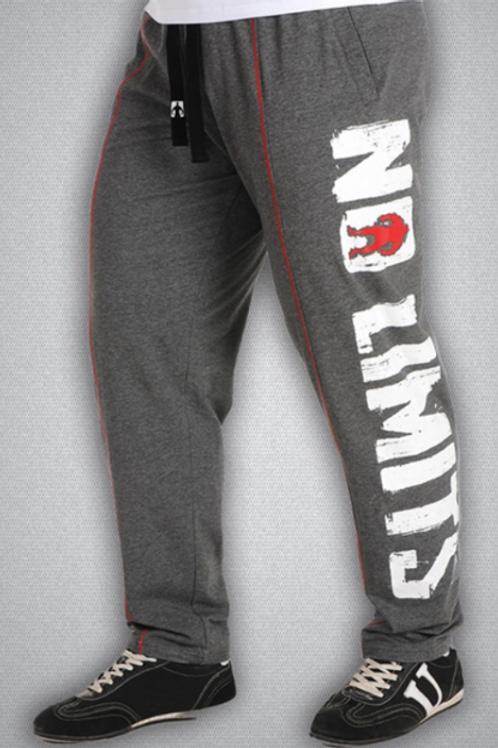 BIG SAM-1611 штаны серые