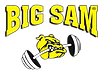 bigsam-logo.png