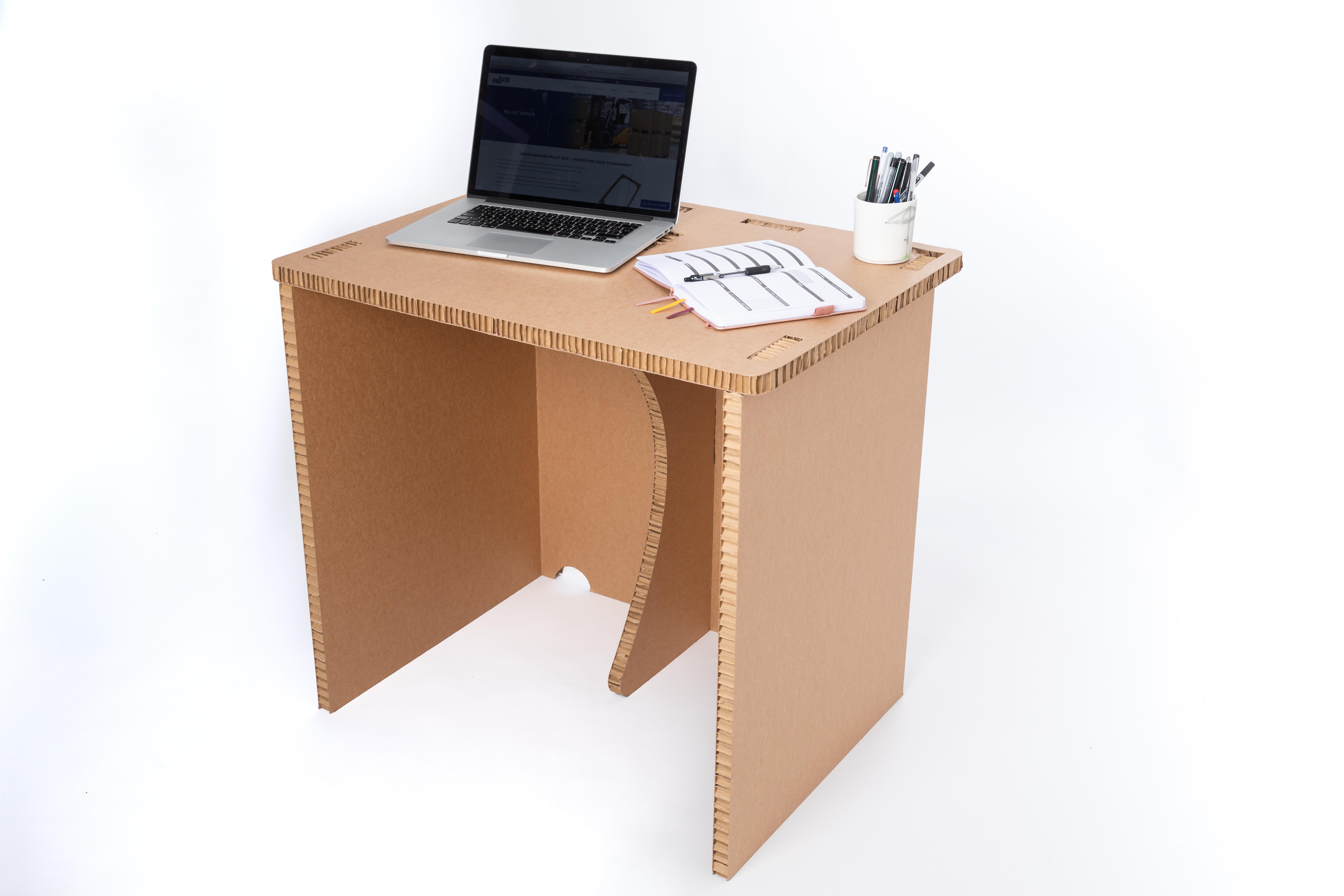 Adult Laptop 3
