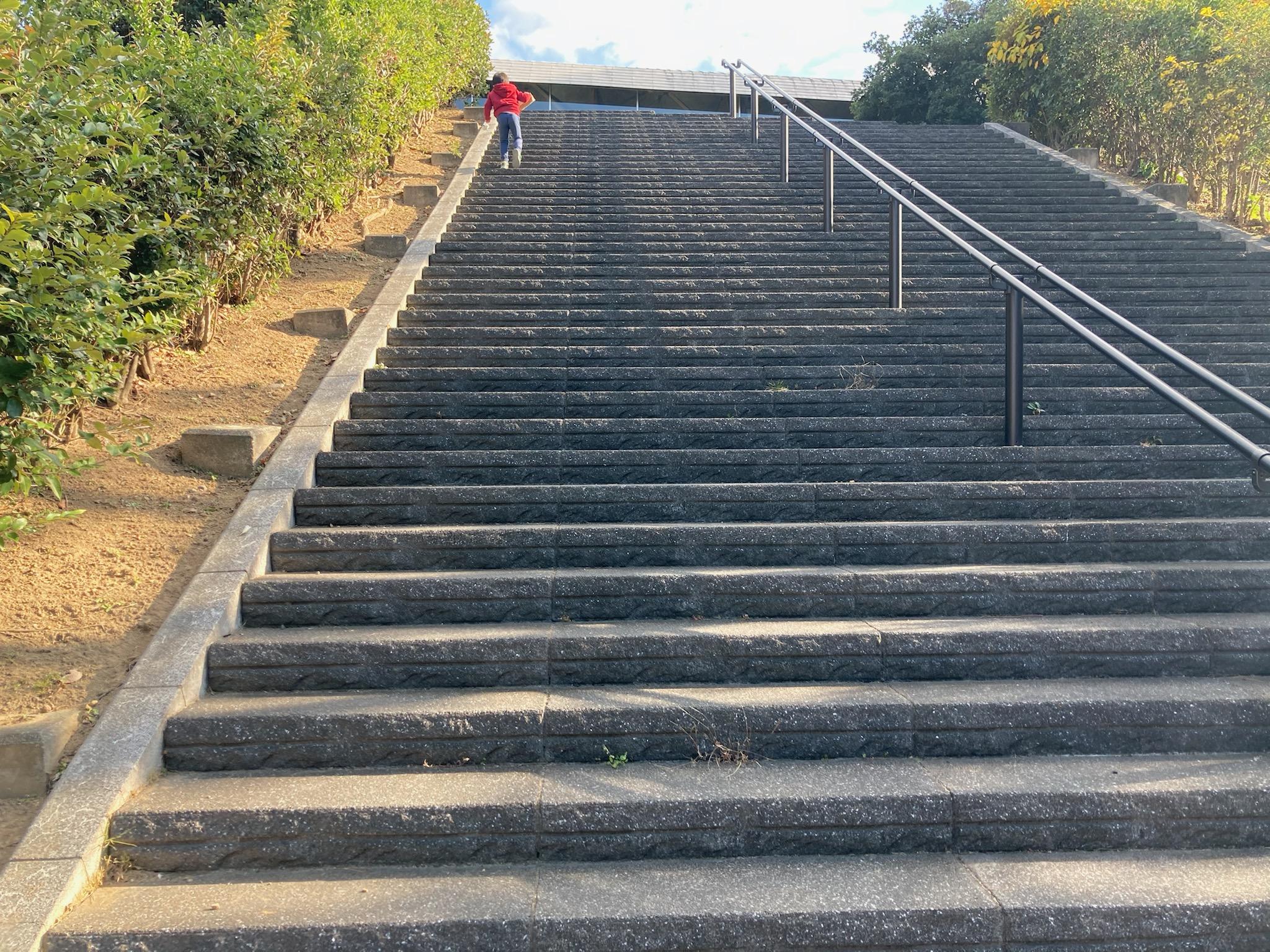 ビジター階段