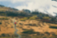 RS6213_Flow Mountain Bike - Dirty Dozen