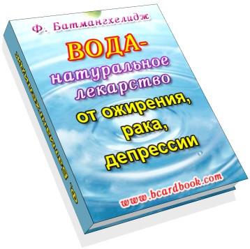 Книга Батманхелинджа