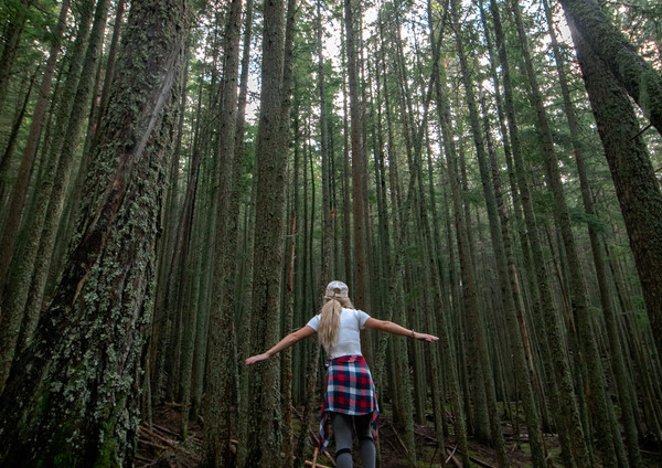 woman-walking-on-a-log-in-the-forest-332