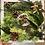 Thumbnail: Moss wall frame IV