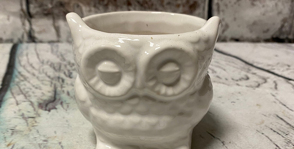 Small owl pot 6cm