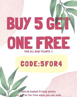 Pink Flash Sale Online Store Poster (1).jpg
