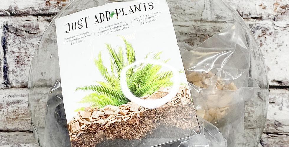 Terrarium: Just add Plants 22