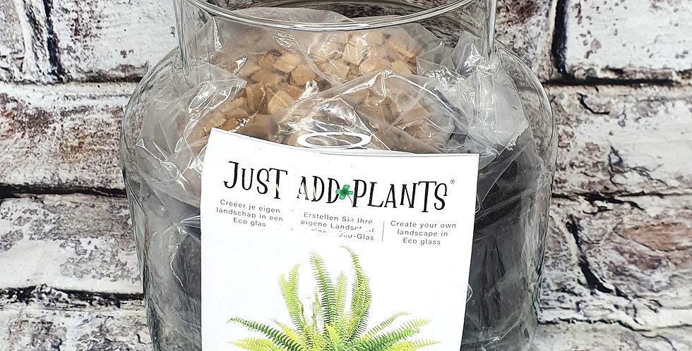 Terrarium - just add plants 19cm