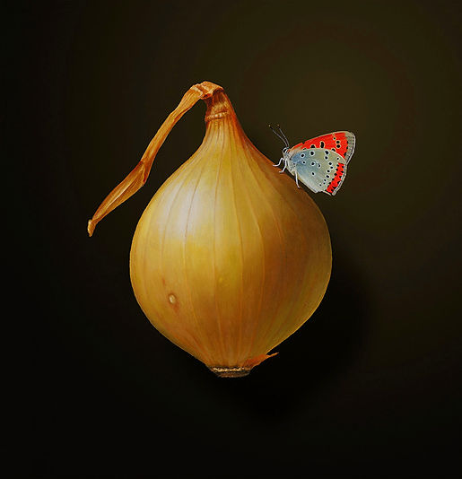 Sweet Onion-150dpi-sRGB-flattened_edited