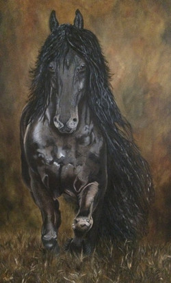 friesian horse oil painting