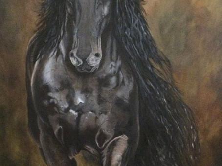 Another Frisian Horse