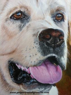 Dog Portrait Painting detail