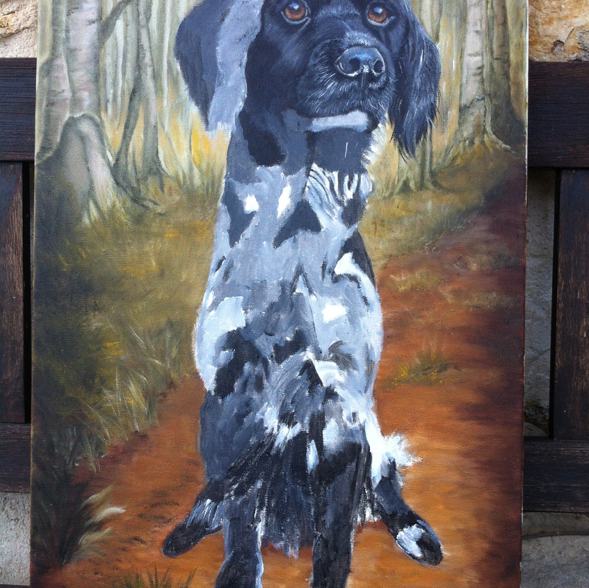Pet Portrait Dog w.i.p.